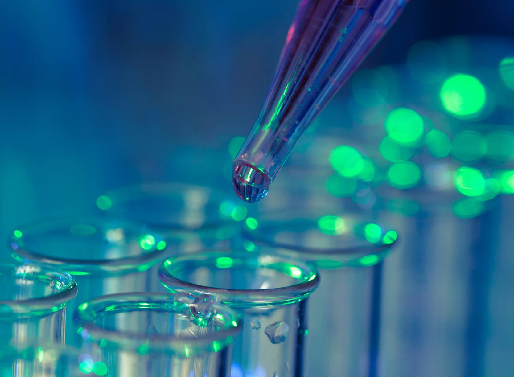 Inmunología, anticuerpos y pruebas inmunológicas: ¿qué son?
