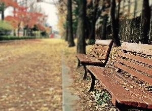 El impacto psicológico del cáncer de intestino : depresión, ansiedad y trastorno de estrés postraumático