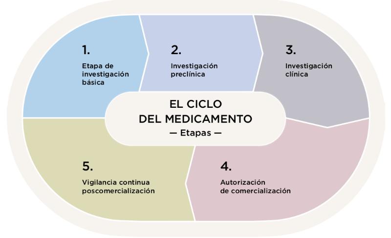 ciclo de vida de un medicamento