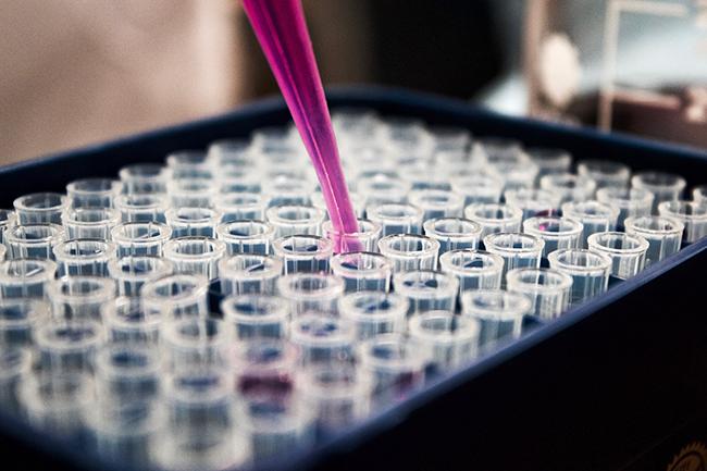 Pruebas genéticas, cáncer de mama