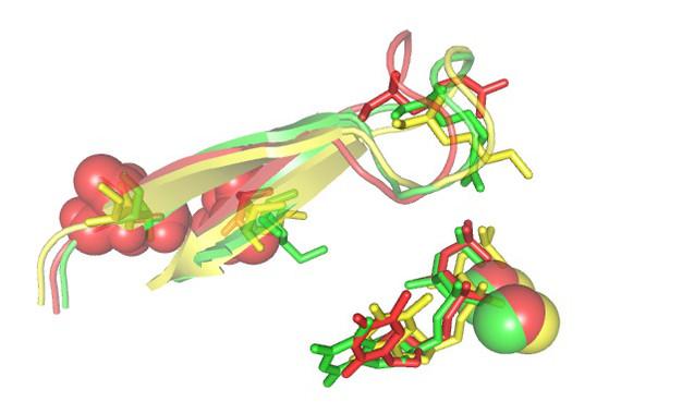 Vista del centro activo de la retrotranscriptasa mostrando cambios estructurales que se asocian con resistencia a fármacos antirretrovirales.