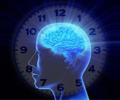 reloj_biologico